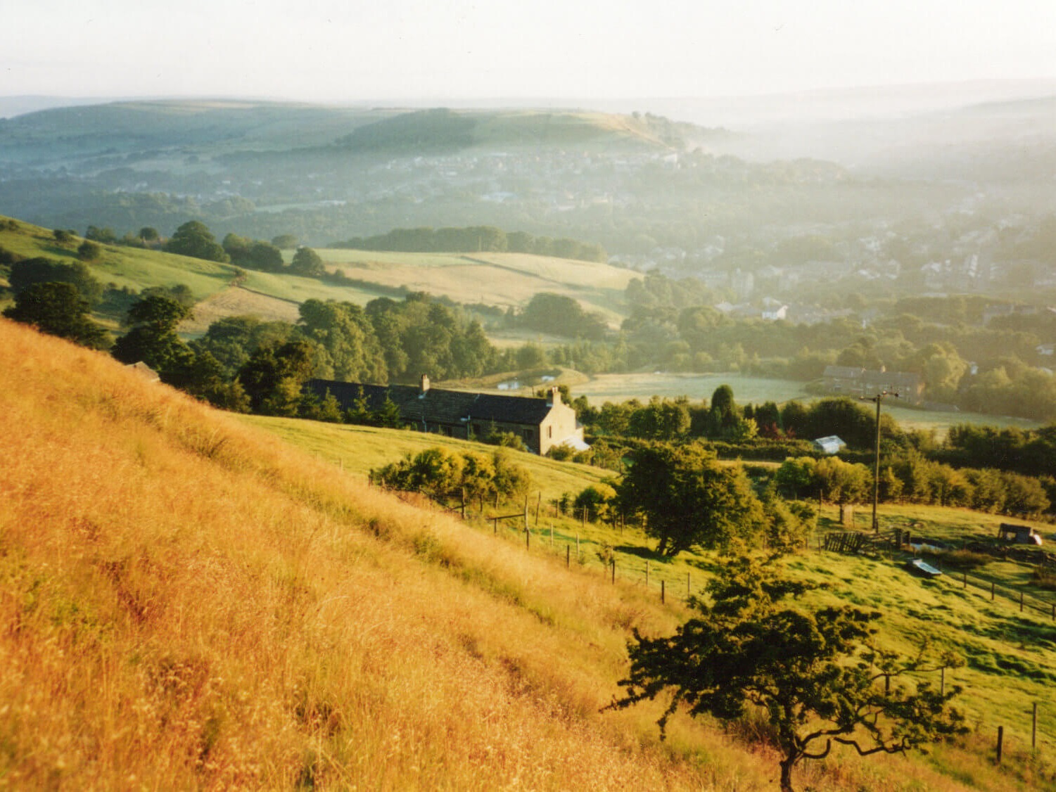 Tippett Farm from the mountain track